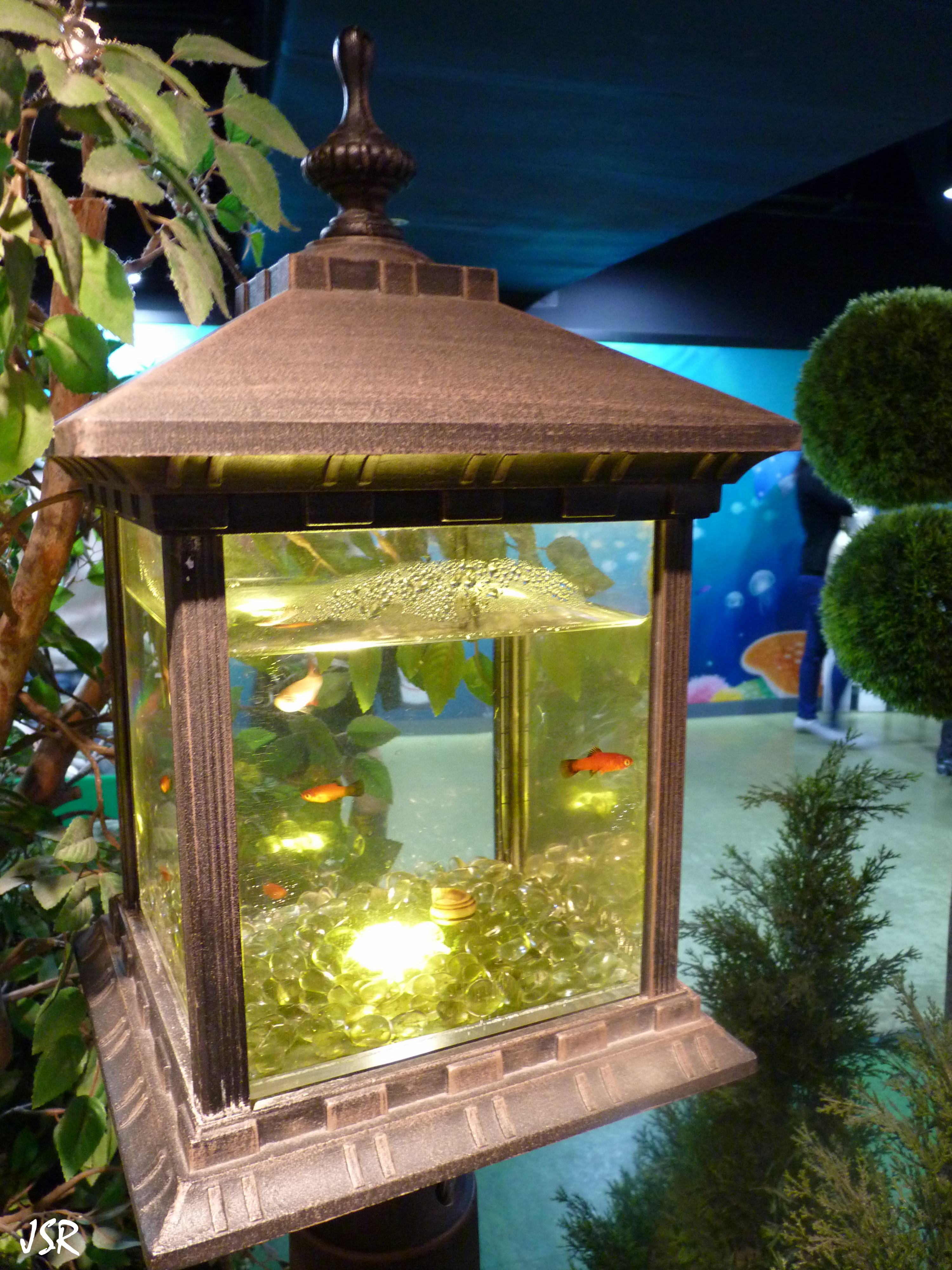 Fish tank toilet - The Paths Wind Around Showing The Visitors The Aquarium S Residents And Not All Of Them Are Sea Life